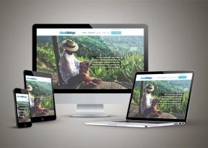Cloud Dialogs Website