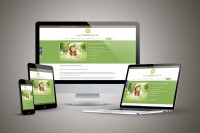 Noosa Holistic Health Website